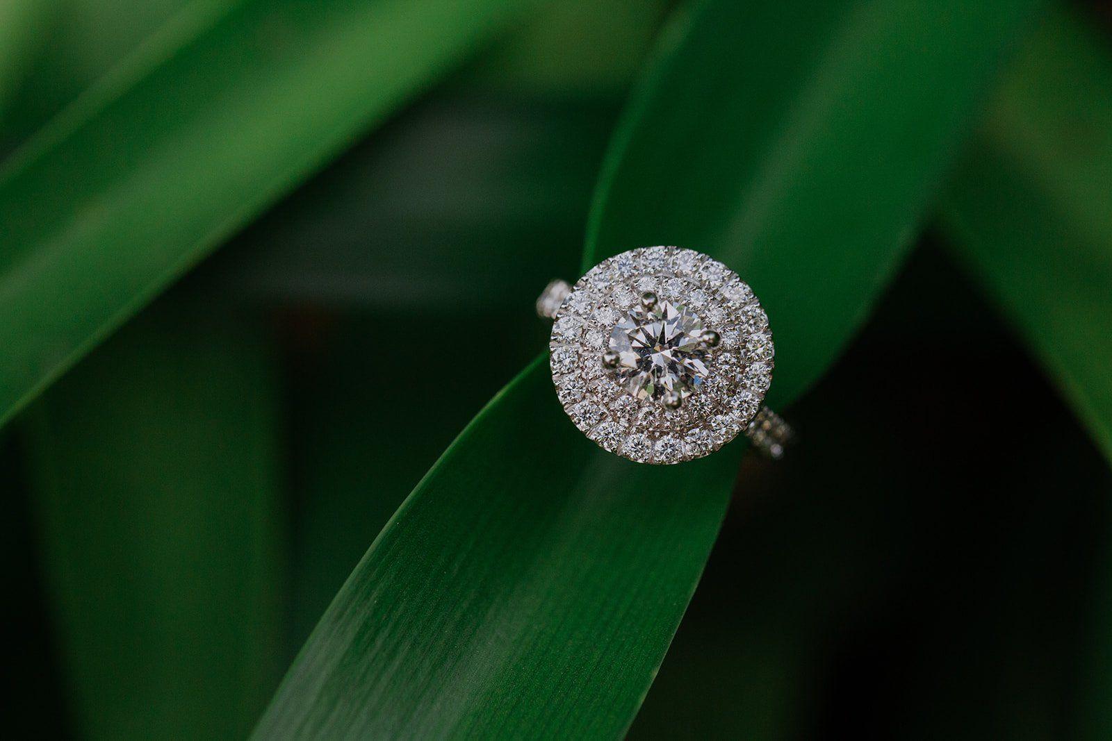 engaged, engagement, engagament ring, wedding rings, wedding ring
