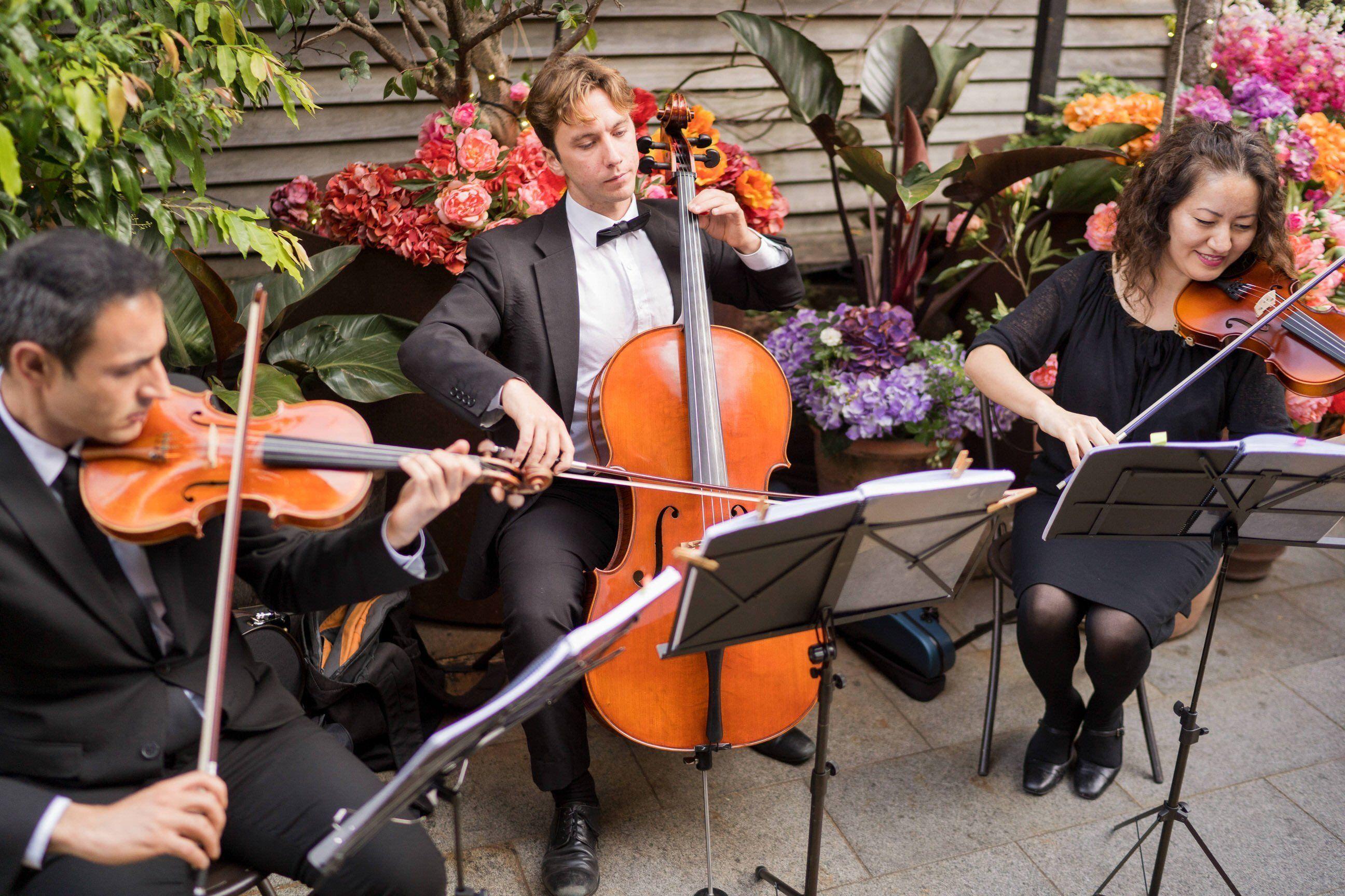 wedding songs, wedding music, wedding orchestra, wedding cellist, wedding music, wedding entertainment