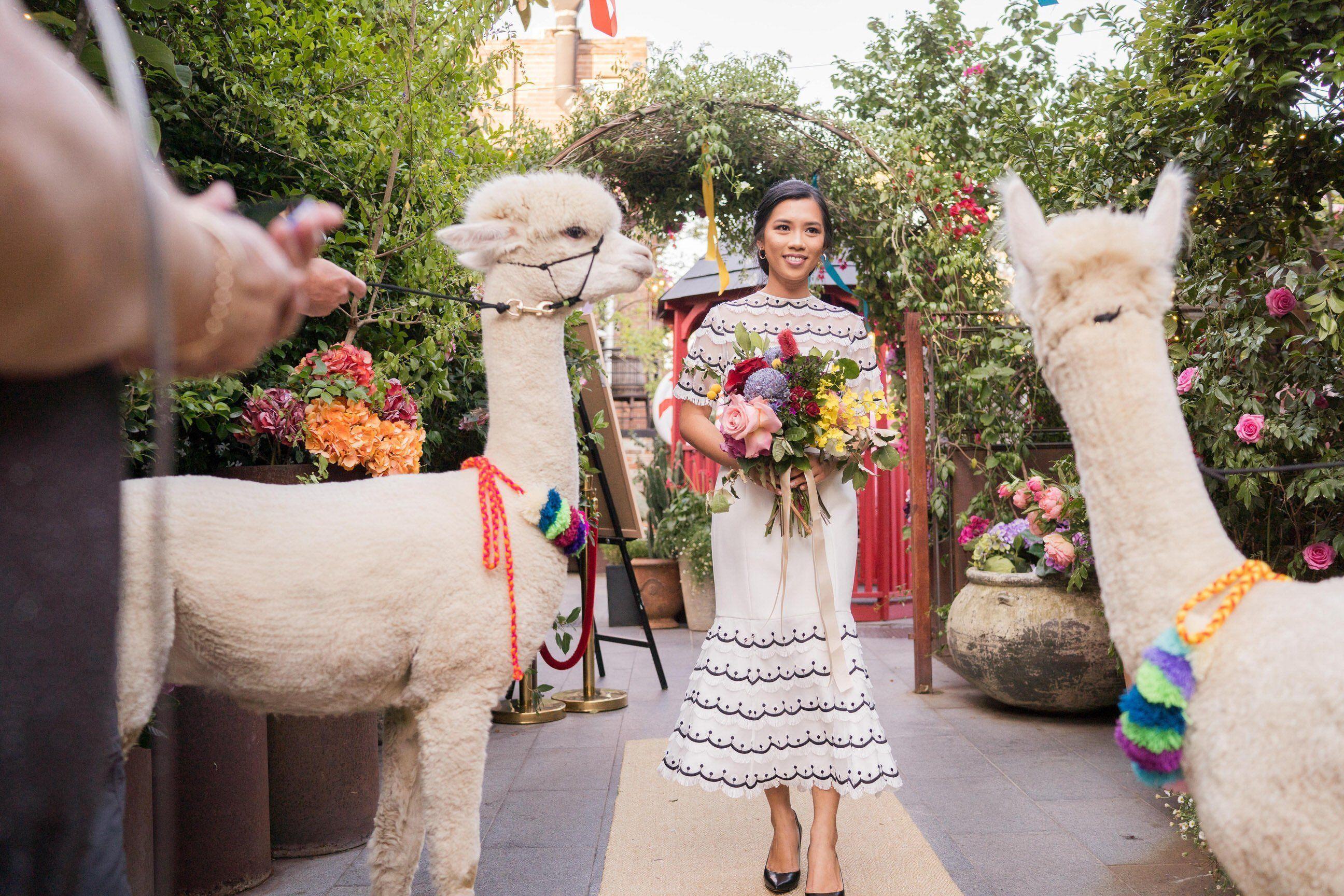 bride, wedding dress, wedding dresses, vintage wedding dress